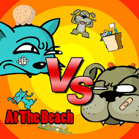 Cat vs Dog: At The Beach