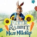 Peter Rabbit Maze Mischief