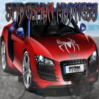 Spiderman Madness