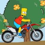 Simpson Bike