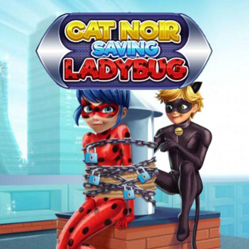 Cat Noir: Saving Ladybug