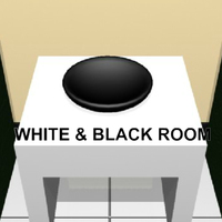White & Black Room