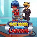 Cat Noir Saving Ladybug