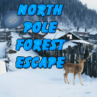 North Pole Forest Escape