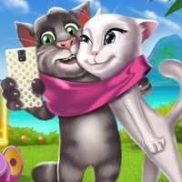 Kittens Selfie Time