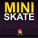 Mini Skate